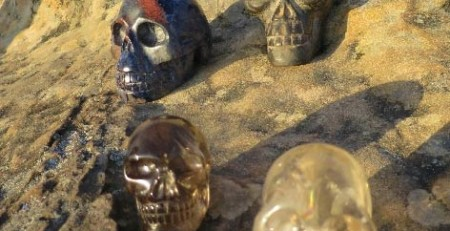 LizPhoto-Skulls-with-view.jpg May 27, 2015 72 kB 472 × 629 Edit Image Delete Permanently URL