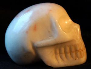 white-skull-185-g-top