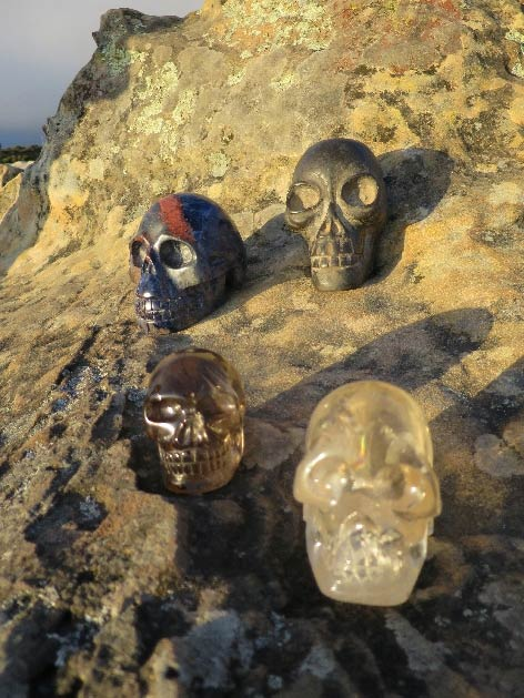 LizPhoto-Skulls-with-view